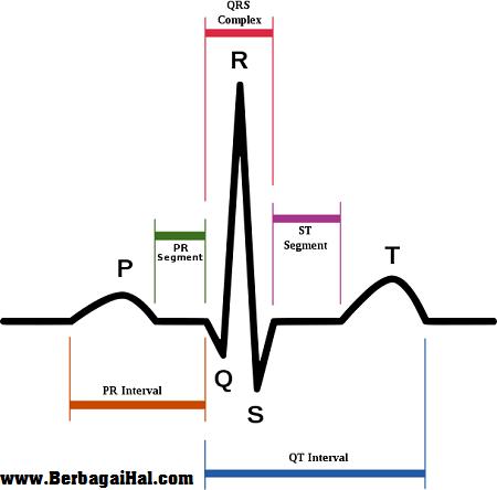 Cara Membaca Ekg Elektrokardiograf